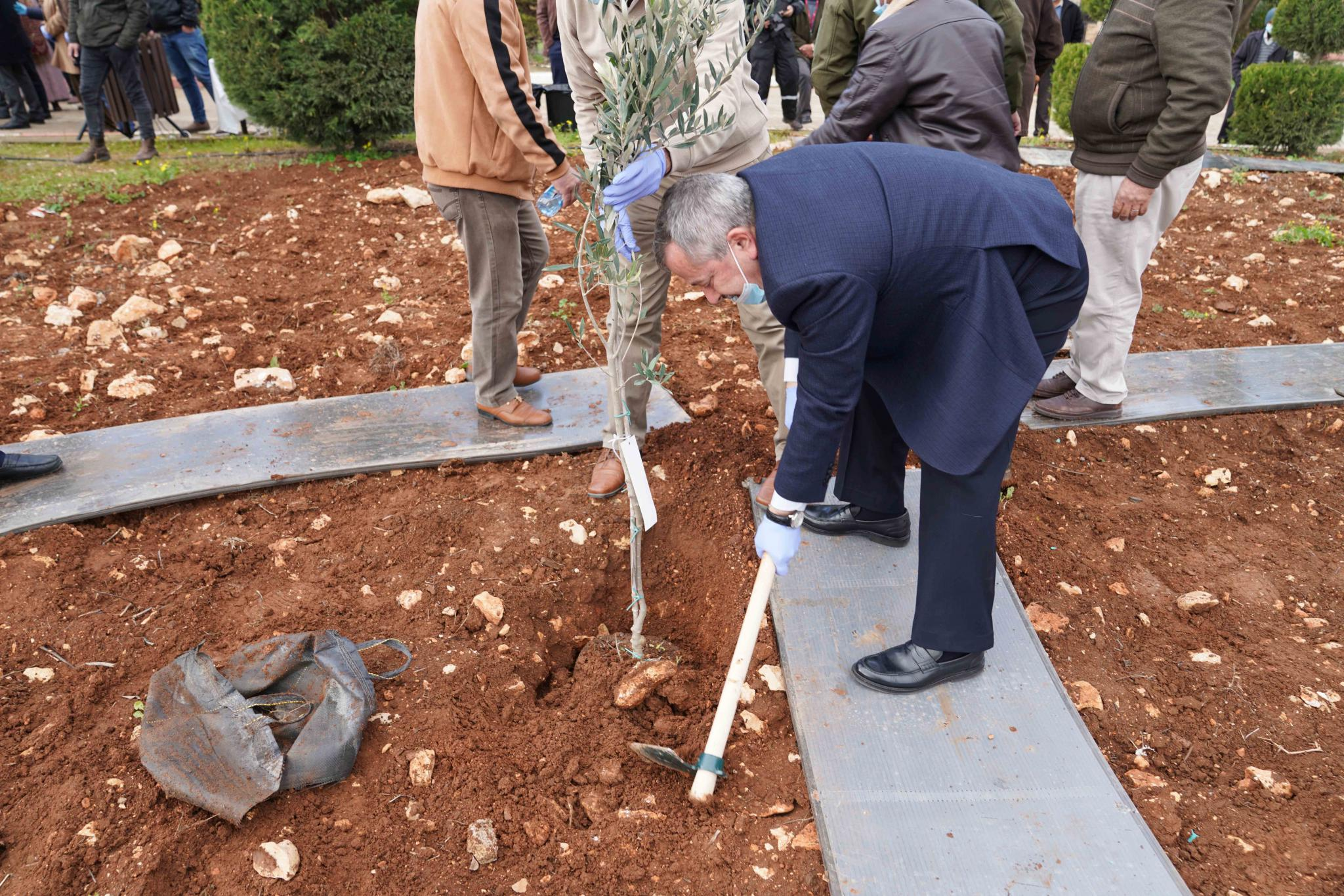 Part of the tree planting in AAUP campus in the Global Arbor Day