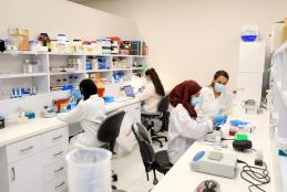 The Molecular Genetics and Genetic Toxicology laboratories in AAUP