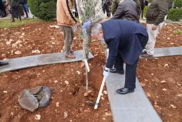 AAUP and the Ministry of Agriculture Celebrates Arbor Day by Planting Olive Trees in AAUP Campus