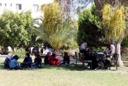 Spring season in the university