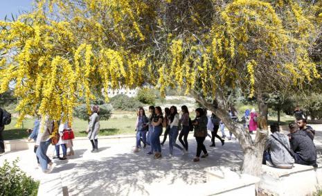 The beginning of spring season at the university