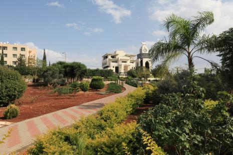 University Gardens